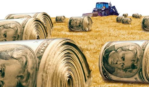 farm-subsidies